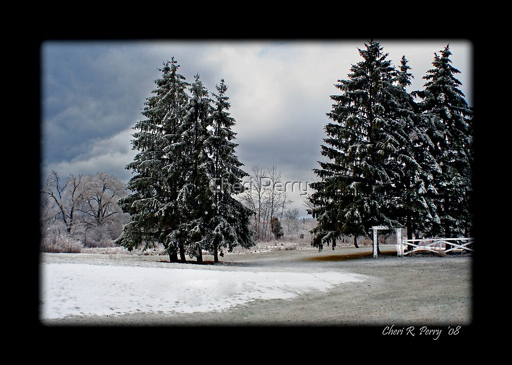Ice Storm II by Cheri Perry