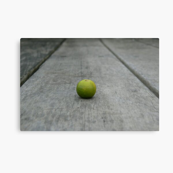 Lime No. 1 Metal Print
