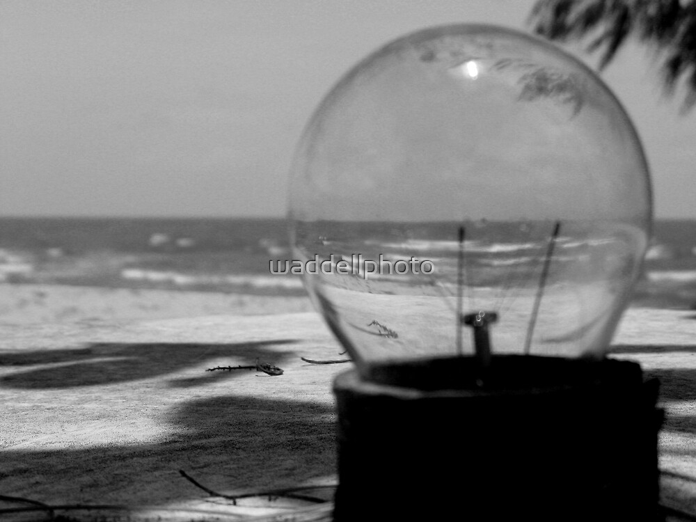 close focus through the looking glass by waddellphoto