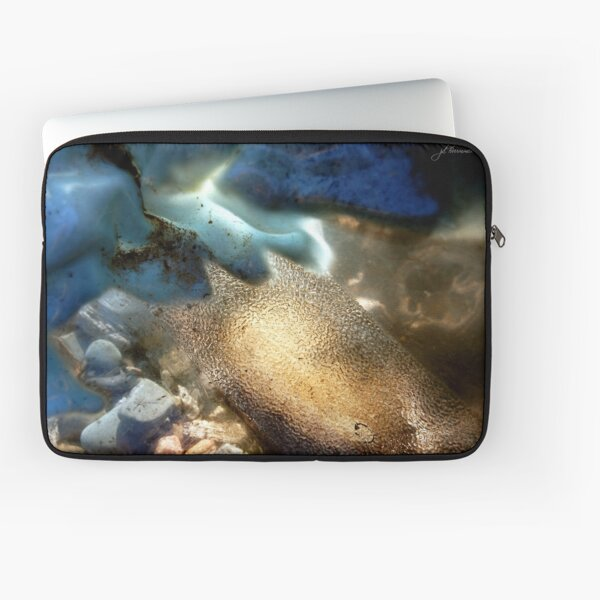 Sea-Through Laptop Sleeve