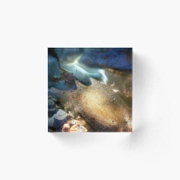 Sea-Through Acrylic Block