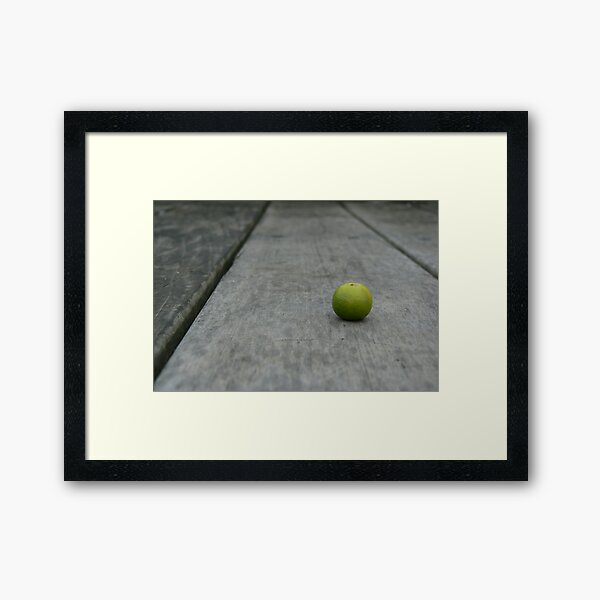 Lime No. 2 Framed Art Print