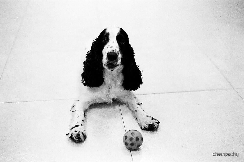 dog by chempathy