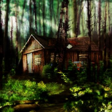 little shack in the woods.  by Nigrecent