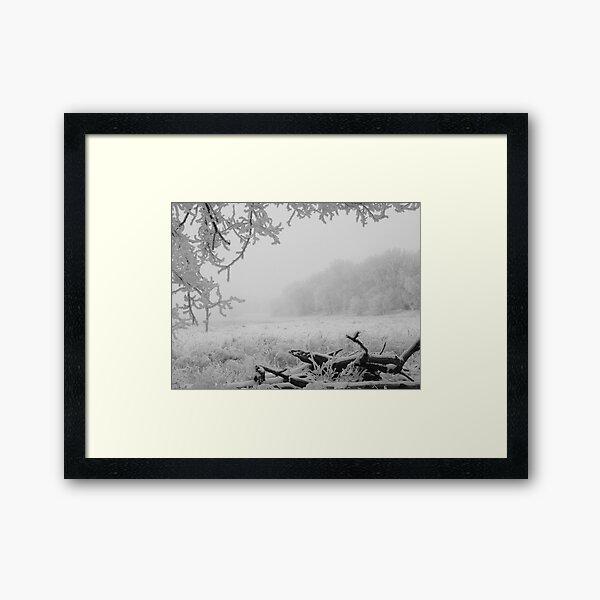 Winter Meadow Framed Art Print