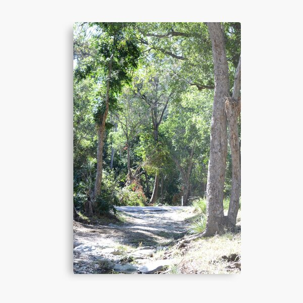 South East Queensland Bush Metal Print