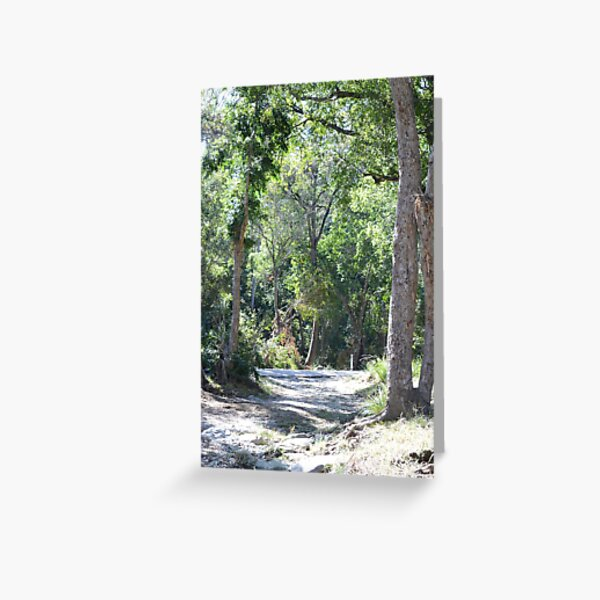 South East Queensland Bush Greeting Card