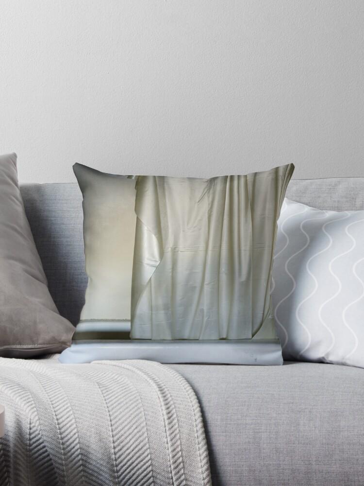 Shower Curtain Throw Pillows By Rob Dobi