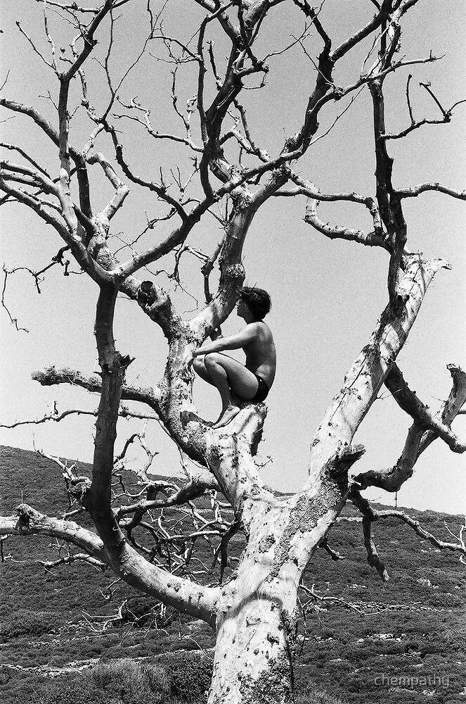Boy in tree by chempathy