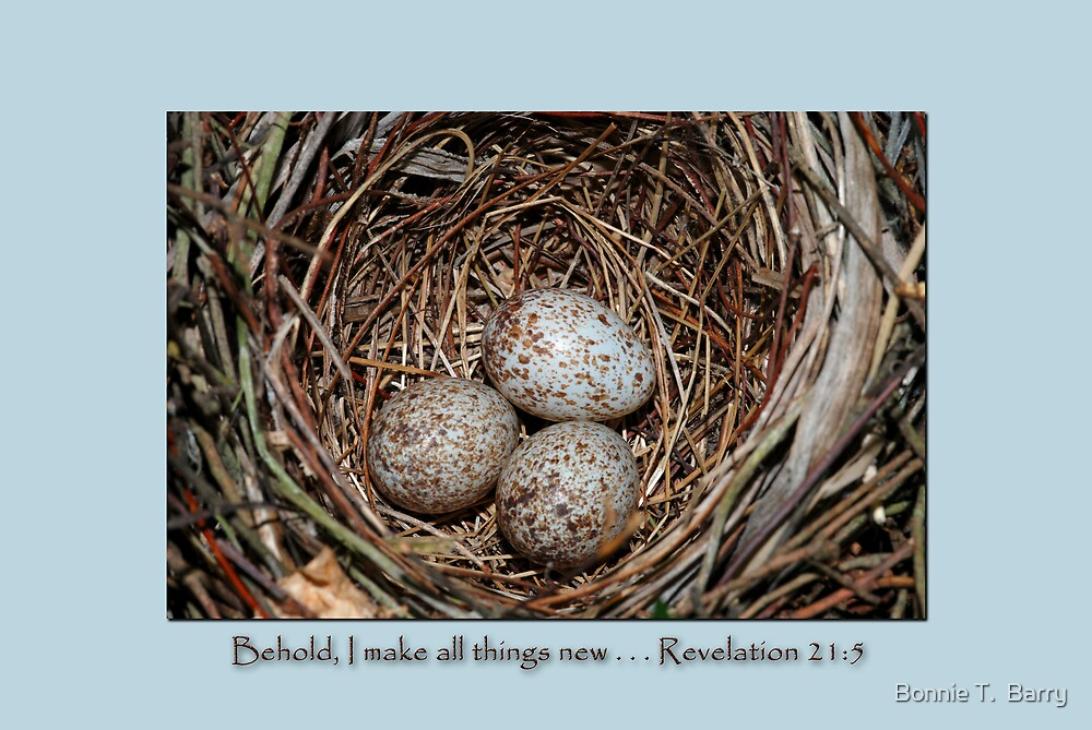 Behold, I make all things new . . . by Bonnie T.  Barry