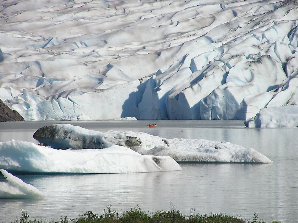 Mendenhall Glaciar - Juneau Alaska 2 by Christine Frydenborg Dargon