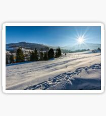 spruce forest on snowy meadow in high mountains Sticker