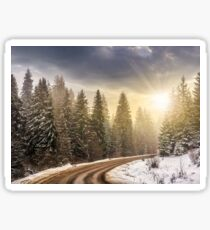 snowy road through spruce forest at sunset Sticker