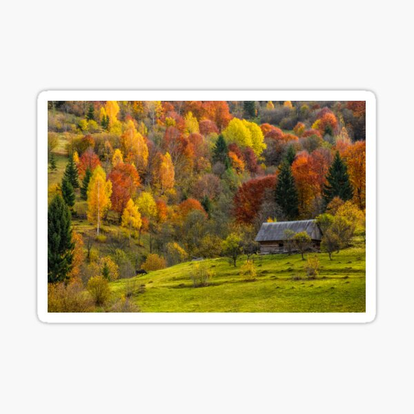 woodshed on the hillside in autumn mountains Sticker