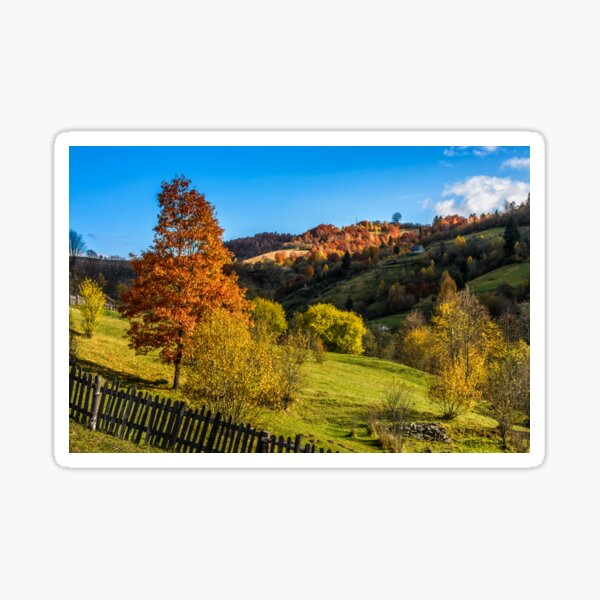 red tree  behind the fence on hillside Sticker