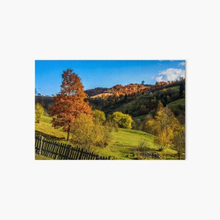 red tree  behind the fence on hillside Art Board Print
