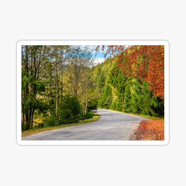 road through the forest in mountains Sticker