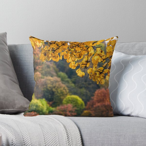forest with colorful foliage on sunny autumn day Throw Pillow