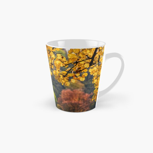 forest with colorful foliage on sunny autumn day Tall Mug