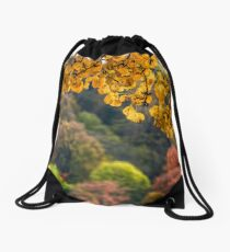 forest with colorful foliage on sunny autumn day Drawstring Bag