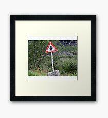 Trolls crossing Framed Print