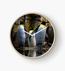 King Penguin, Antarctic, Montreal Biodome Clock