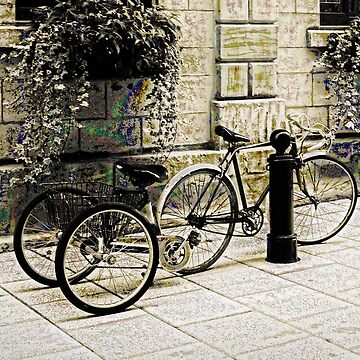 Tandem Bicycle and Flowers by Photograph2u