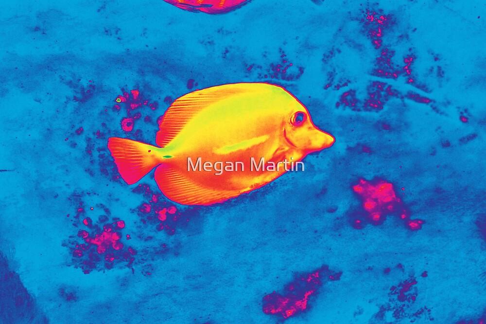 Fishy  by Megan Martin