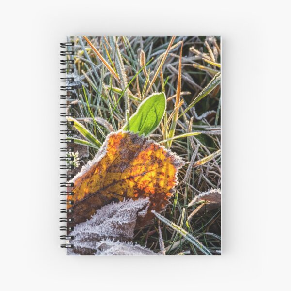 yellow and green foliage in the grass Spiral Notebook