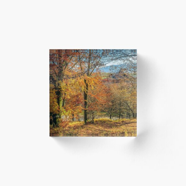 forest in red foliage on sunny autumn day Acrylic Block