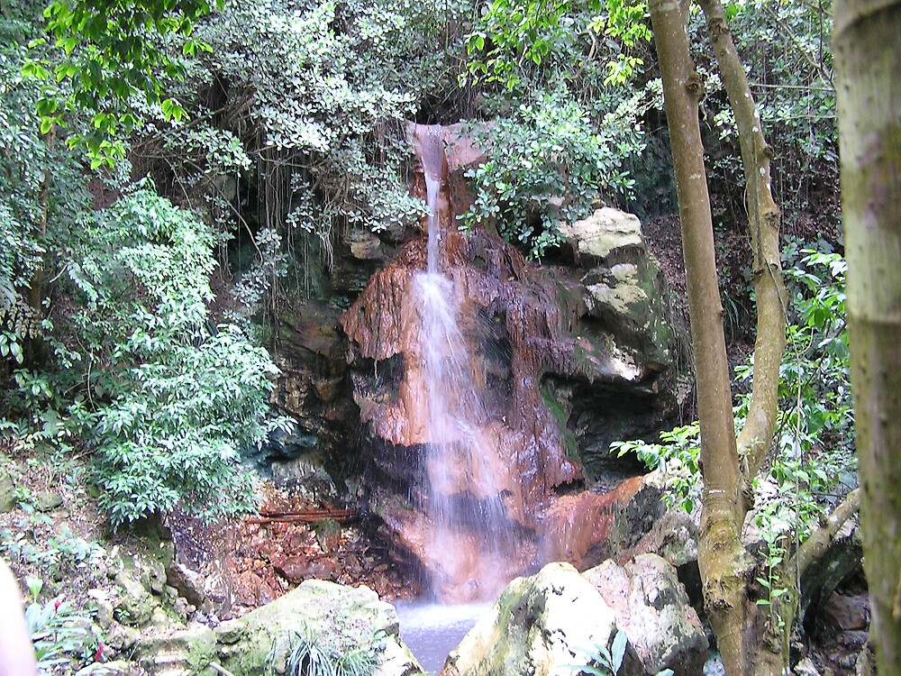 St Lucia Waterfall by Christine Frydenborg Dargon