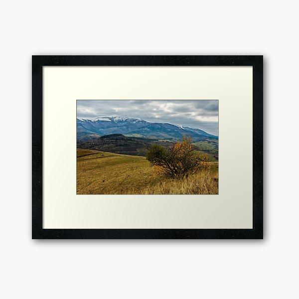 snowy peaks over the meadow Framed Art Print