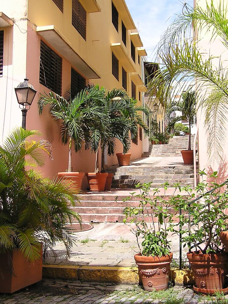 Old San Juan 1 by Christine Frydenborg Dargon