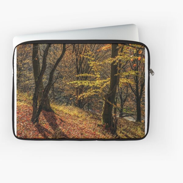 autumn forest in foliage Laptop Sleeve