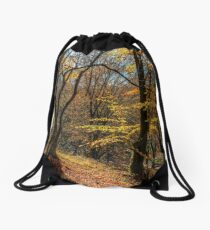 autumn forest in foliage Drawstring Bag