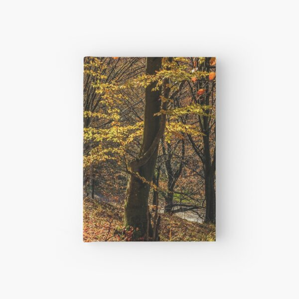 autumn forest in foliage Hardcover Journal