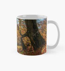 autumn forest in foliage Classic Mug