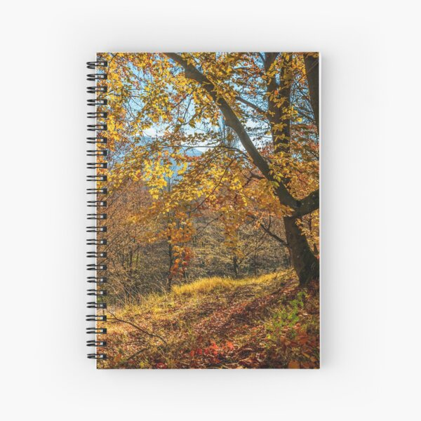 autumn forest in foliage Spiral Notebook