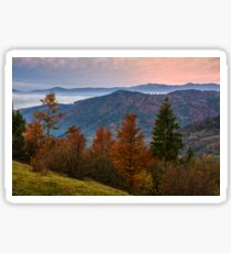 forest over foggy valley in autumn mountains Sticker