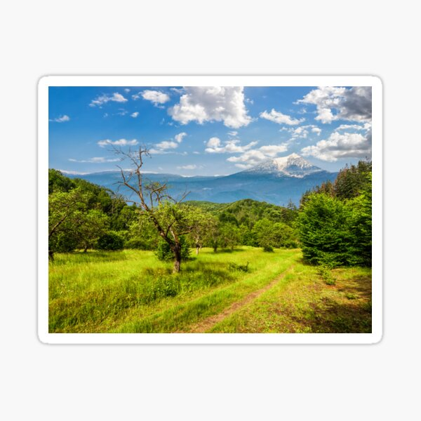Winter in mountains meets spring in valley Sticker