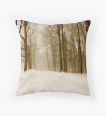 Drive Through The Storm Throw Pillow
