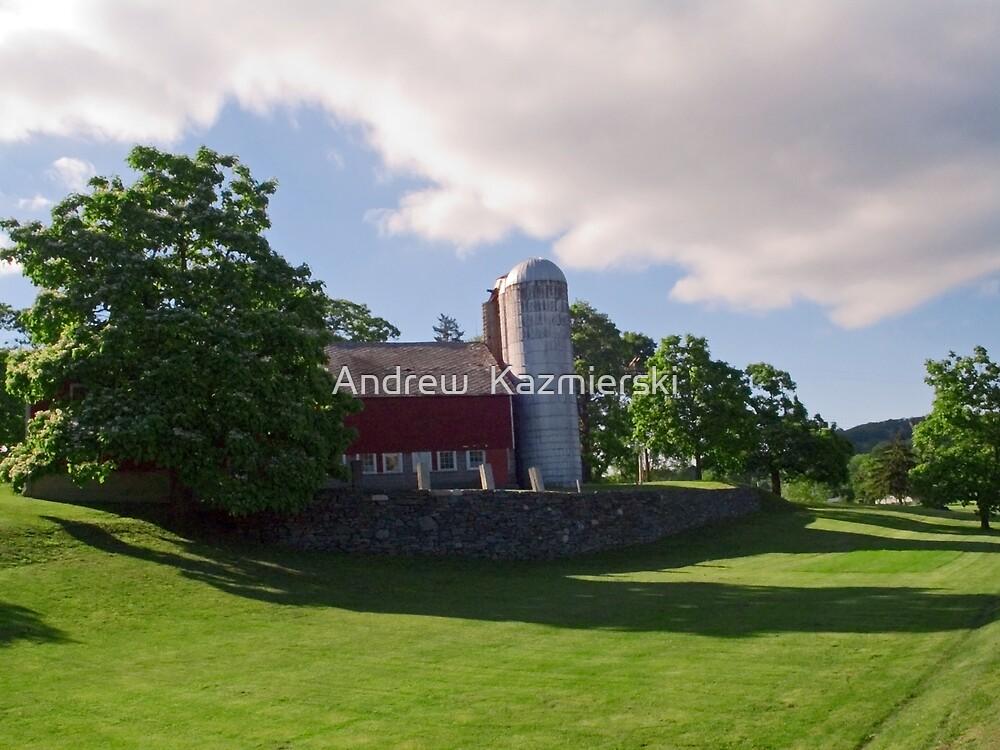 Sunny Day Farm by andykazie