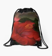 One could not pluck a flower without troubling a star.   Loren Eiseley  Drawstring Bag
