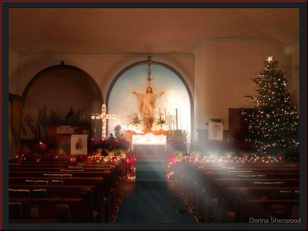 Reason for the Season by Donna Sherwood