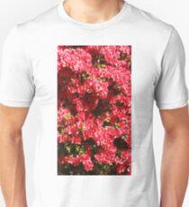 Spring in Muskogee Unisex T-Shirt