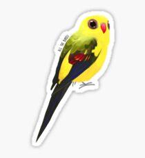 Regent parrot - print/sticker Sticker