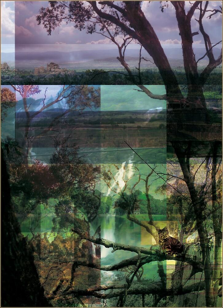 Thoreau's Pond by neil davis