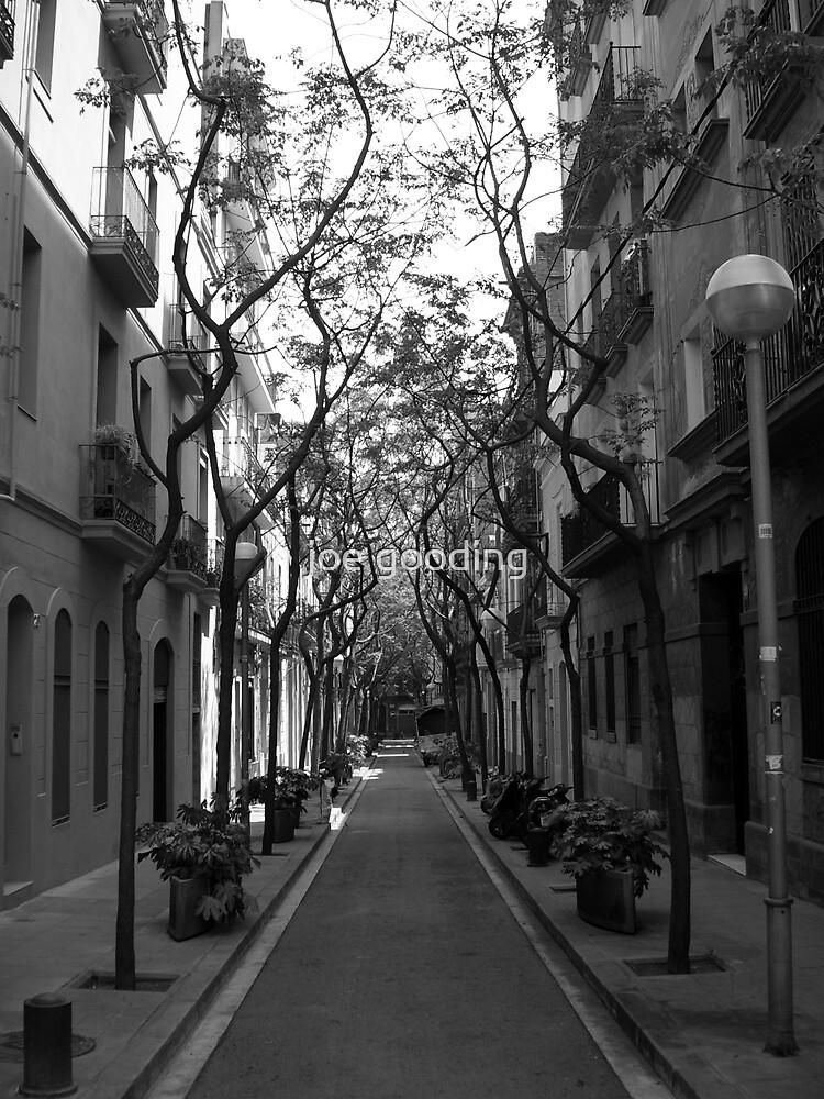 tree lined avenue by joe gooding