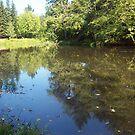 lake front by octaviusmiller