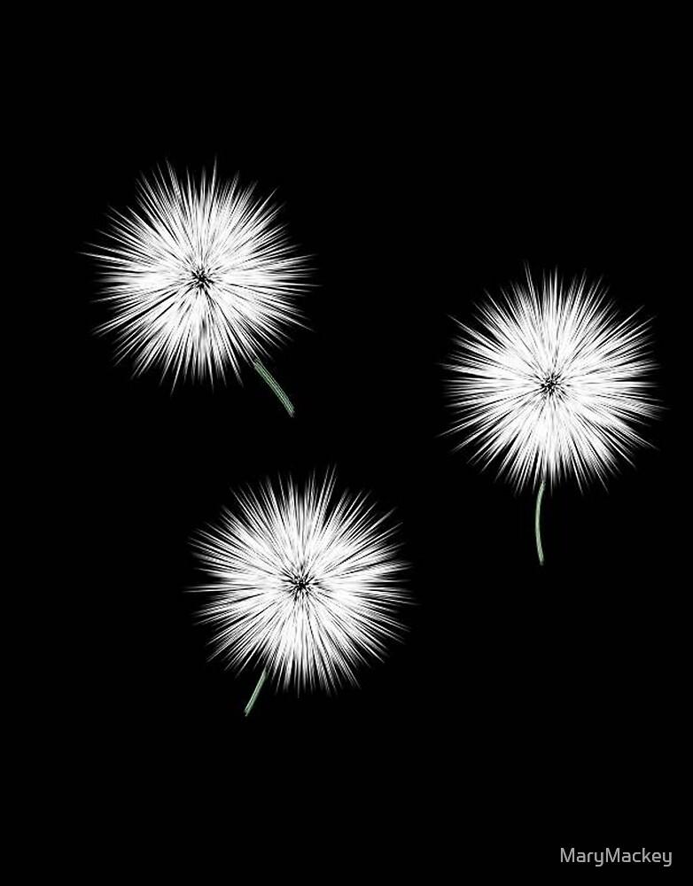 Dandelions by MaryMackey